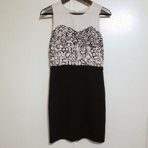 LOFT Sleeveless Cream & Black Classic Career Dress
